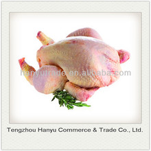 quality chinese whole frozen chicken for export halal