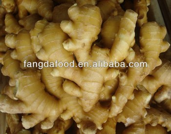 Yellow Fresh Ginger/Organic Ginger New Crop