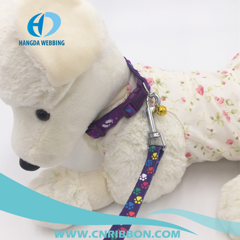 Popular pattern printed nylon webbing of dog collar and leash