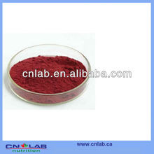 Best price acai berry brazil export for sale