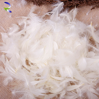 Fashion design cheap price down and feathers white goose feather