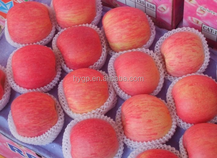 High Quality Fresh Apple Red Color