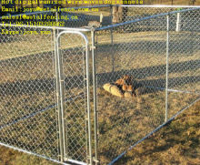 Moduler galvanized wire woven steel dog pens