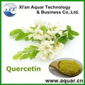 Factory Supply Organic 98% Quercetin Powder from Onion Extract