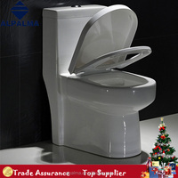 The Hot Selling Toilet Bowl Newest WC Samll Bathroom Sanitary
