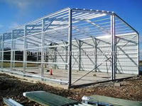 Prefabricated House with Steel Structure