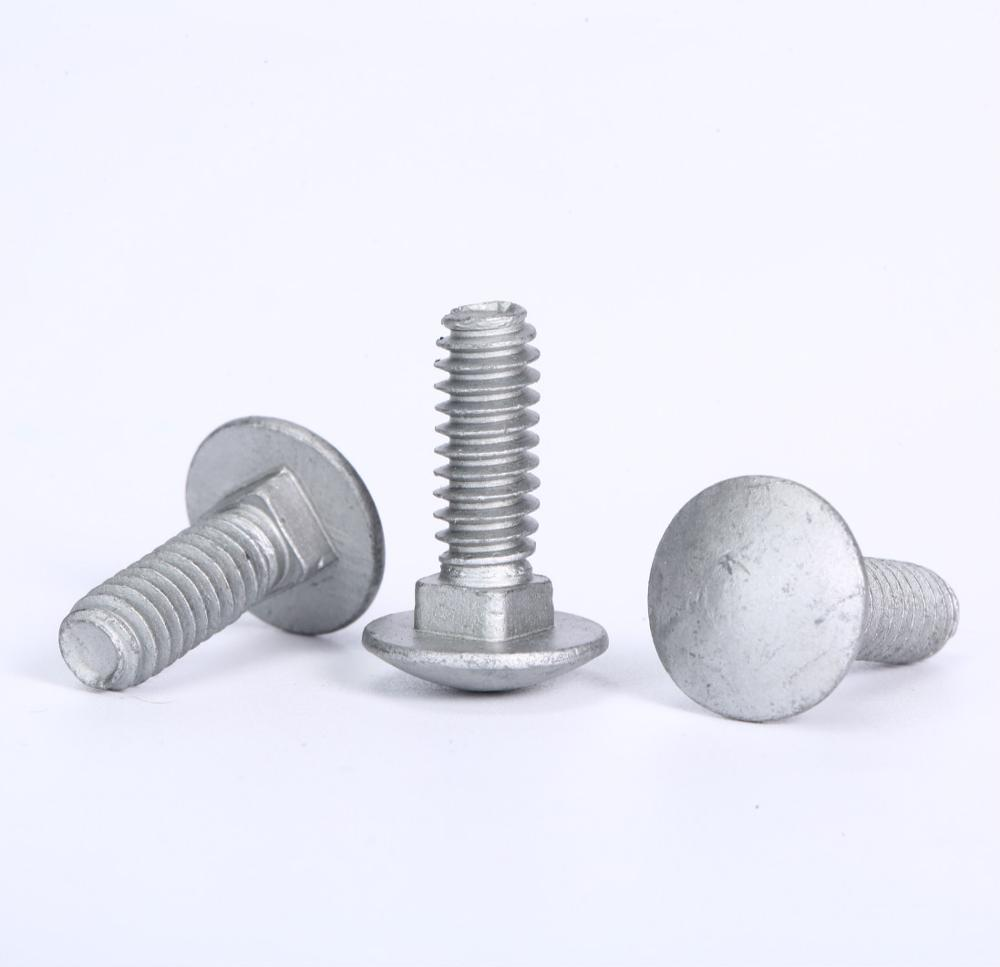 DIN603 Stainless steel carriage bolt M4-M12 Chinese manufacture