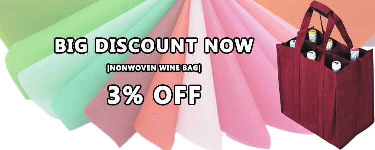 New Arrival From China Supplier Non Woven Wine Bag