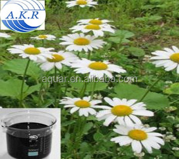 Top quality 100% pure natural pyrethrum extract 25% free sample