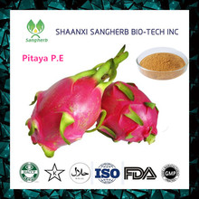 dried organic dragon fruit seed/powder with competitive price for sale