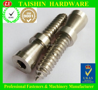 Stainless Steel Hex Socket Cap Head With Round Washer Tapping Screw