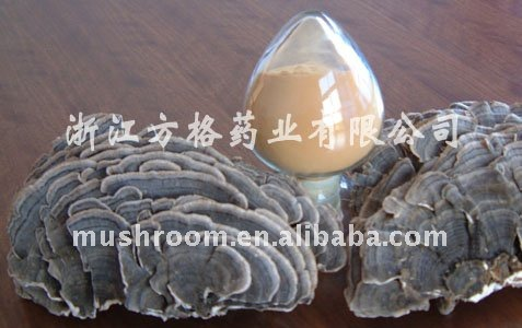 trametes versicolor extract;yunzhi mushroom extract;health care products