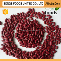 2015 Japanese Red Kidney Beans with highes Protein for Sale