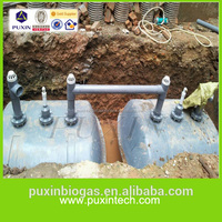 Domestic waste water treatment system designed by PUXIN