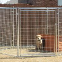 Factory flat roof wood dog kennels for wholesales