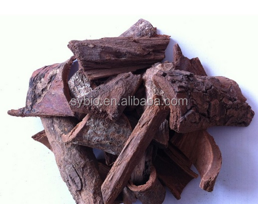 Natural herb extract for man health Pygeum Extract Phytosterols 2.5% 13%