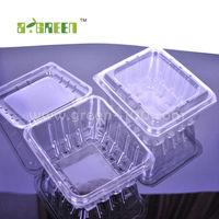 Retail food Plastic Container/blister for fruit