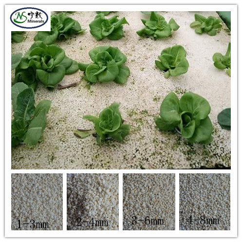 100,50,25,10 & 5 liter perlite grade hydroponics grow medium pot soil plant with manufacture price