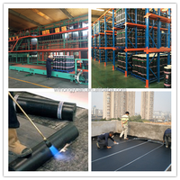 polyester reinforced sbs modified bitumen waterproof membrane
