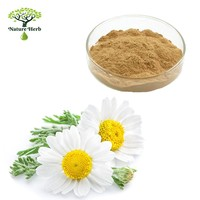 High Quality Purity Apigenin 1.2% Chamomile Extract