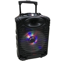 2018 Portable Trolley Outdoor Stage Speaker
