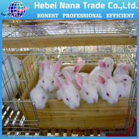 2016 factory new hot sale Wire Rabbit Cage