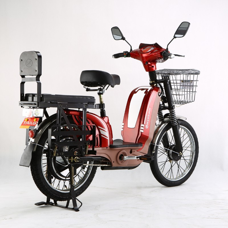 Electric Bicycle Tailg Electric Bicycle