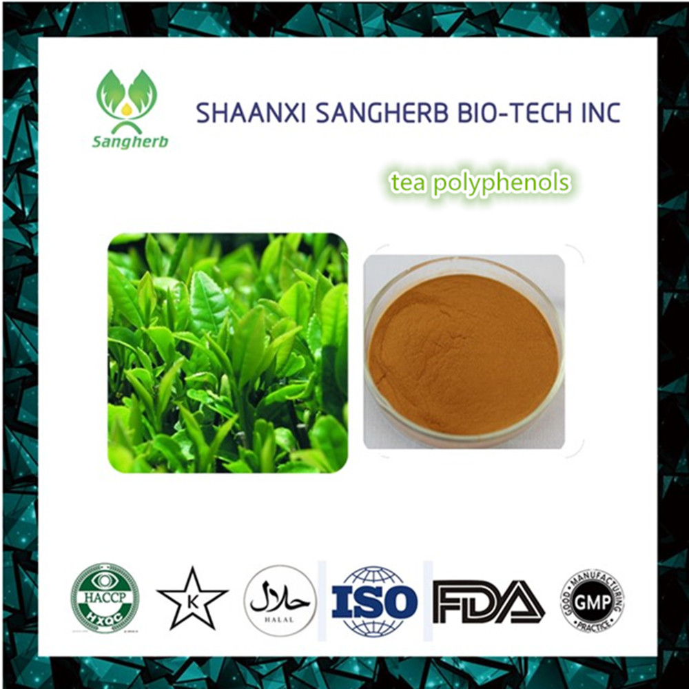Food additive Tea polyphenol 84650-60-2 natural antioxidant