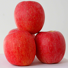 red and bulk fuji apples wholesale fruit prices with high quality