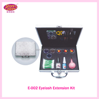 Professional Individual Eyelash Extension Kit.high quality case