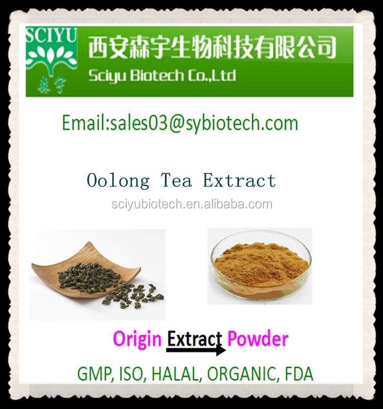 Factory Supply Best Price Oolong Tea extract 20%-80% Polyphenols