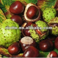 top quality horse chestnut dry extract