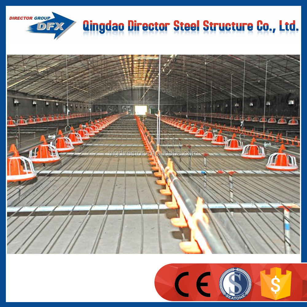 Large Span Steel Poultry Farm Organization Structure