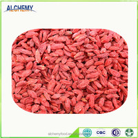 2016 new product goji berry medlar fruits for sale