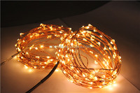 Homdox 10m 33ft 100 LEDs Christmas String Light with Wireless Handheld Remote Control, Warm White
