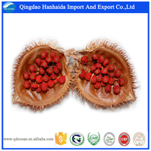 Factory supply high quality nature Annatto seeds with reasonable price and fast delivery on hot selling !!