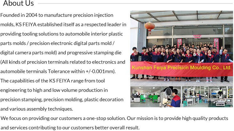 oem 2 cav plastic injection molding parts
