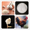 /product-detail/feed-grade-allicin-powder-for-poultry-in-chemical-industry-60240379759.html