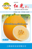 Big Fruit Hybrid Golden Yellow Sweet Melon Seeds For Cultivation-Red Light F1