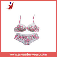 js-153 Hot Sexy Girls wear cotton bra and panty set with pink heart printing (accept OEM)