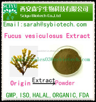 Factory Price Laminaria Japonica Extract Fucoxanthin 5% 10% 40% 50%