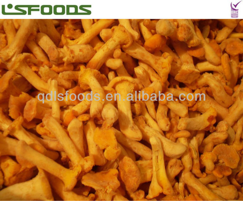 frozen chanterelles from china