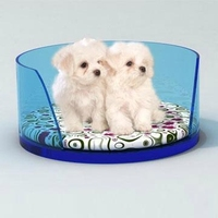 2015 New Products Clear Acrylic Pet Dogs Or Cats Bed
