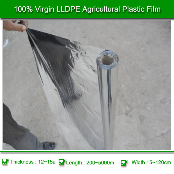 Best Black Polythene Film Plastic Film Rolls for Sale