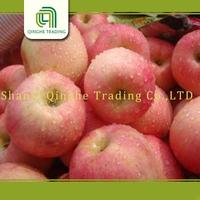 New design red mature huaniu apple factory bulk apples