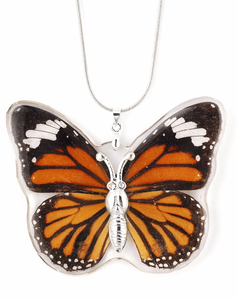 Hot sale women Unique and beautiful REAL butterfly wing jewelry