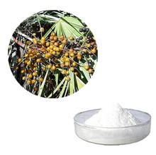 High-quality saw palmetto extract powder benefits men's sexual function