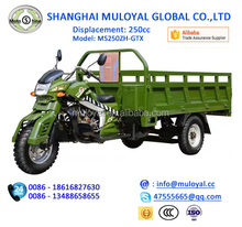 250cc Three Wheel diesel motorcycle Water Cooling Engine Tricycle for Cargo