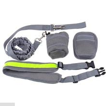 Light Weight No Pull Bungee Elastic Dog Leash, Running Dog Leash With Bag Carrier
