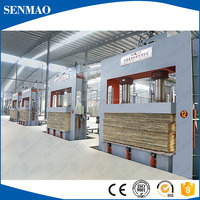 China making plywood cold press machine/Automatic loading hydraulic cold press machine with spring